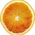 vitamin c helps fight colds